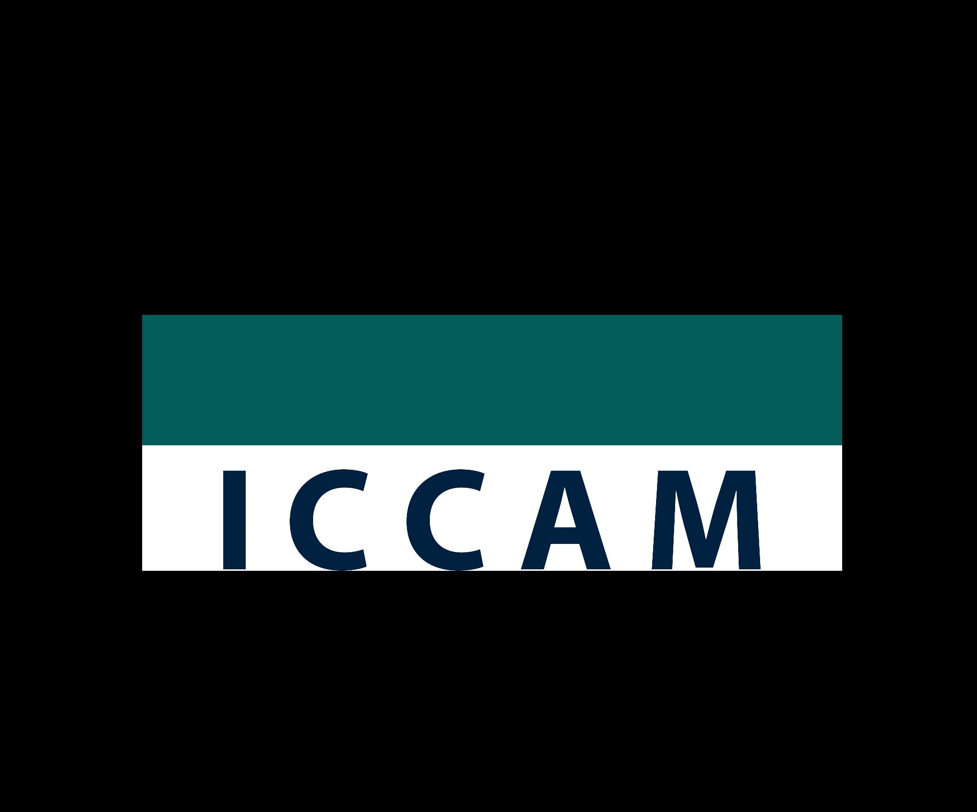 INHOPE ICCAM